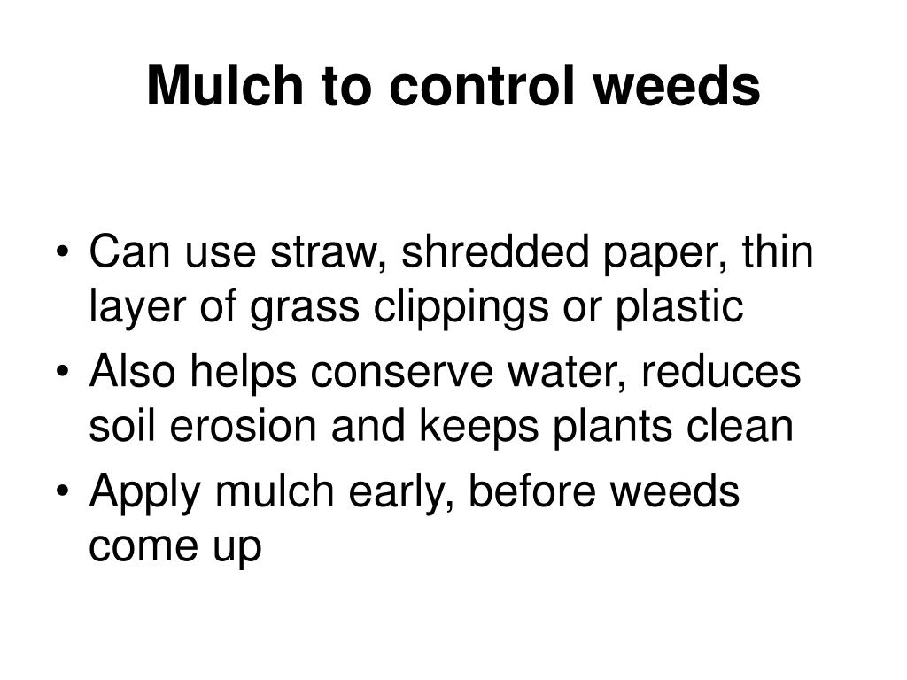 Mulch to control weeds