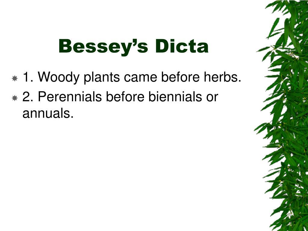 Bessey's Dicta