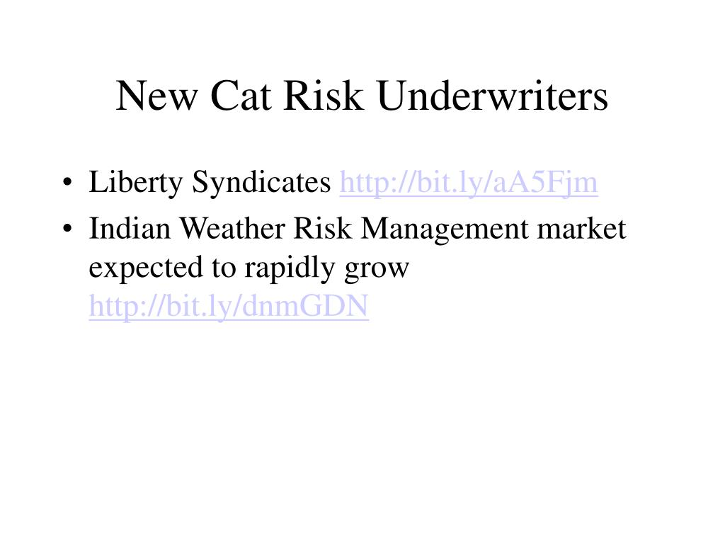 New Cat Risk Underwriters