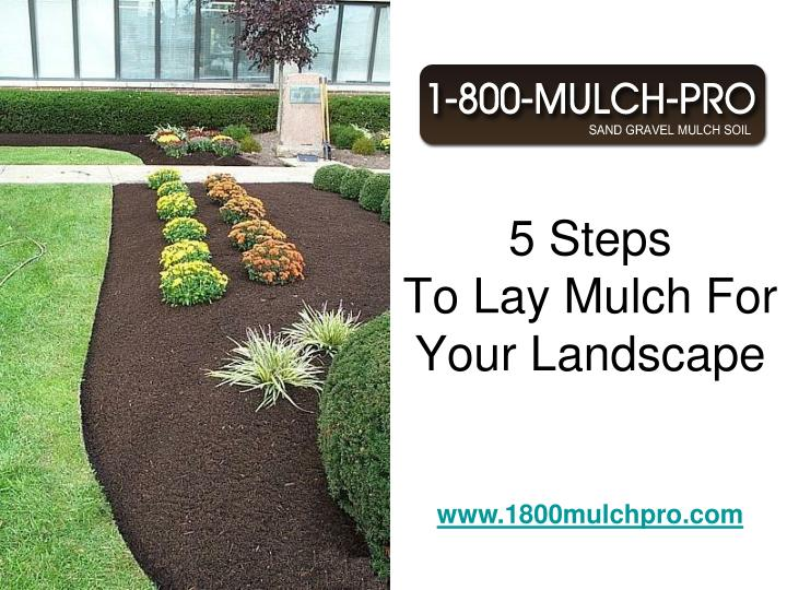 5 steps to lay mulch for your landscape