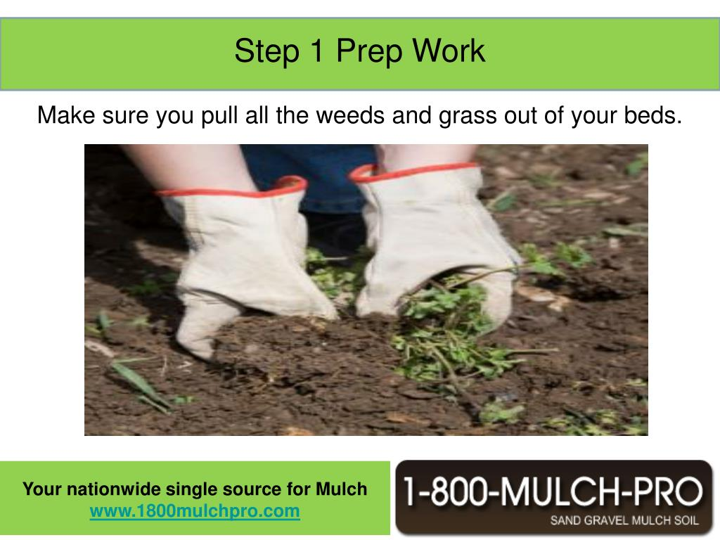 One of the most important steps in mulching your beds is the prep work. The last thing you want is to go through all the effort and money to mulch your beds only to have it look bad because you have weeds and grass sticking out through your mulch.  Also it will be a lot more difficult to weed your beds after the mulch is down.