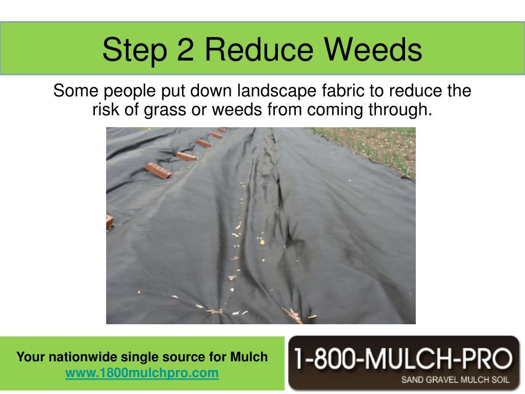 Step 2 Reduce Weeds