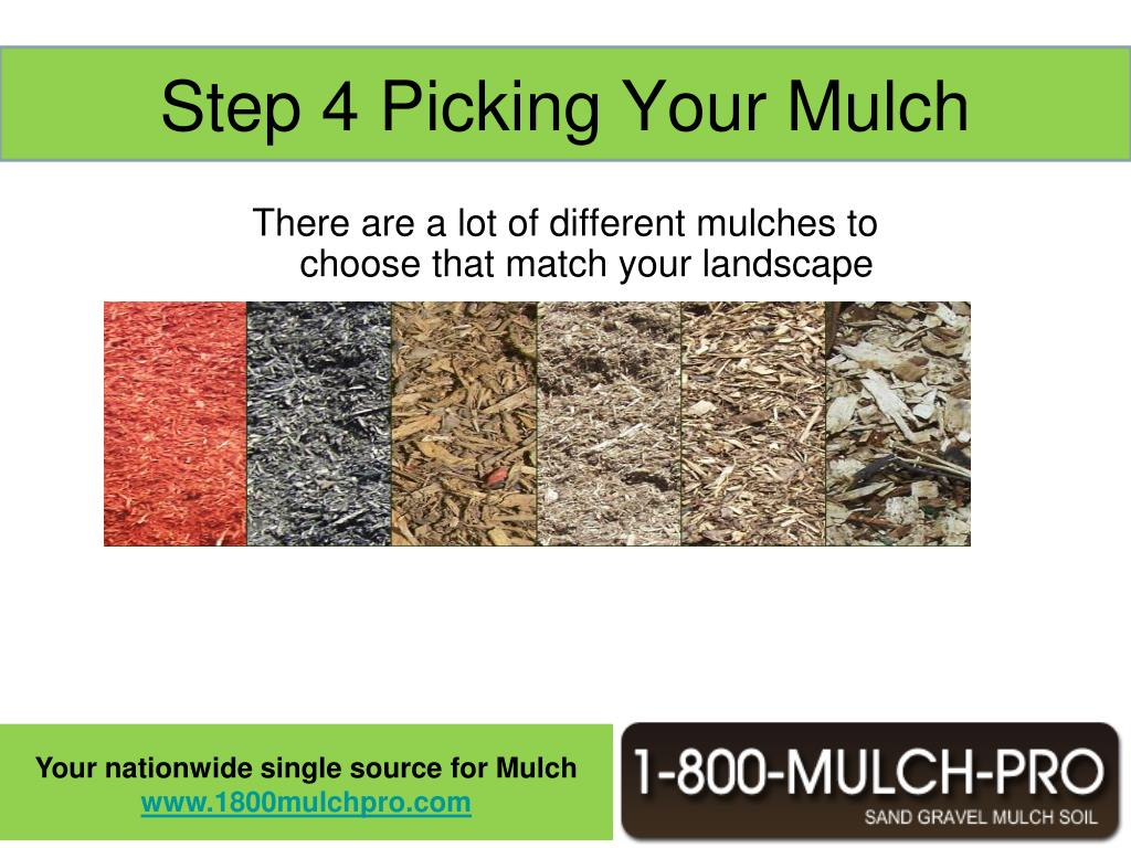Step 4 Picking Your Mulch