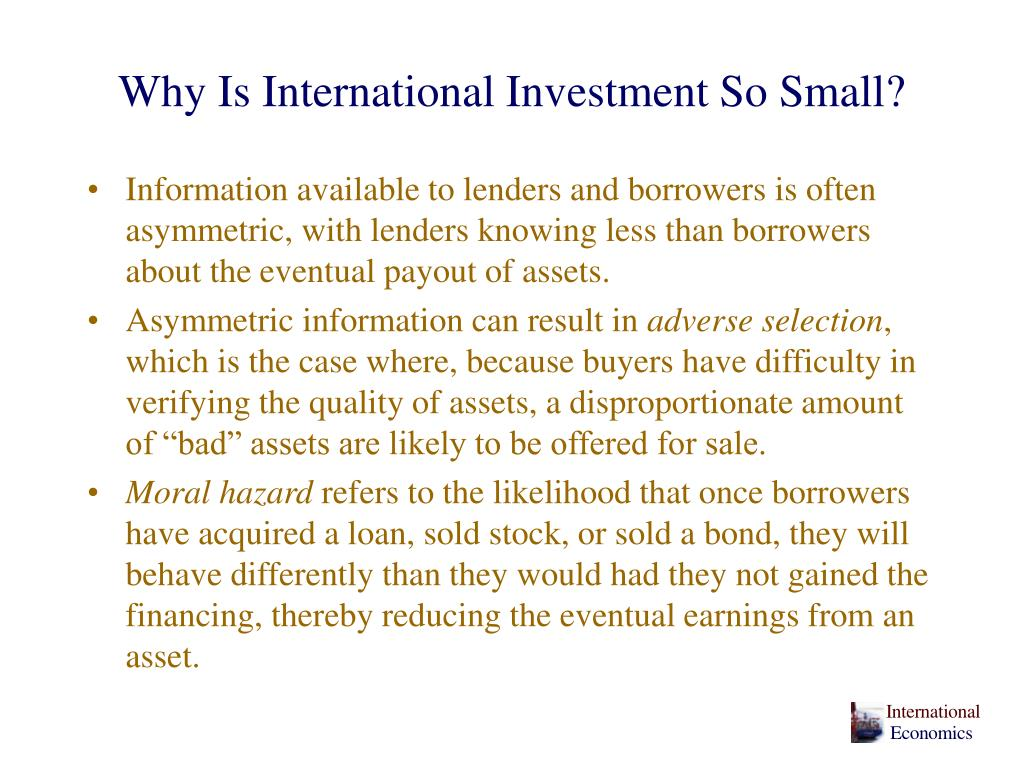 Why Is International Investment So Small?