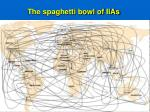the spaghetti bowl of iias
