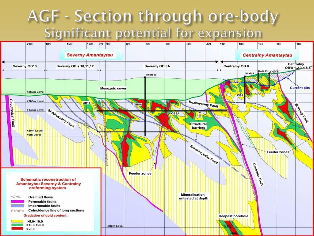 AGF - Section through