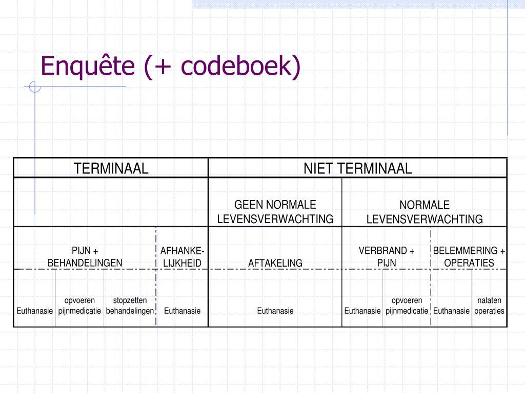 Enquête (+ codeboek)