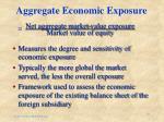 aggregate economic exposure