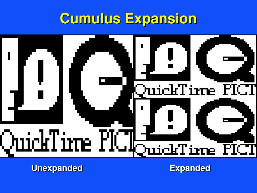 Cumulus Expansion