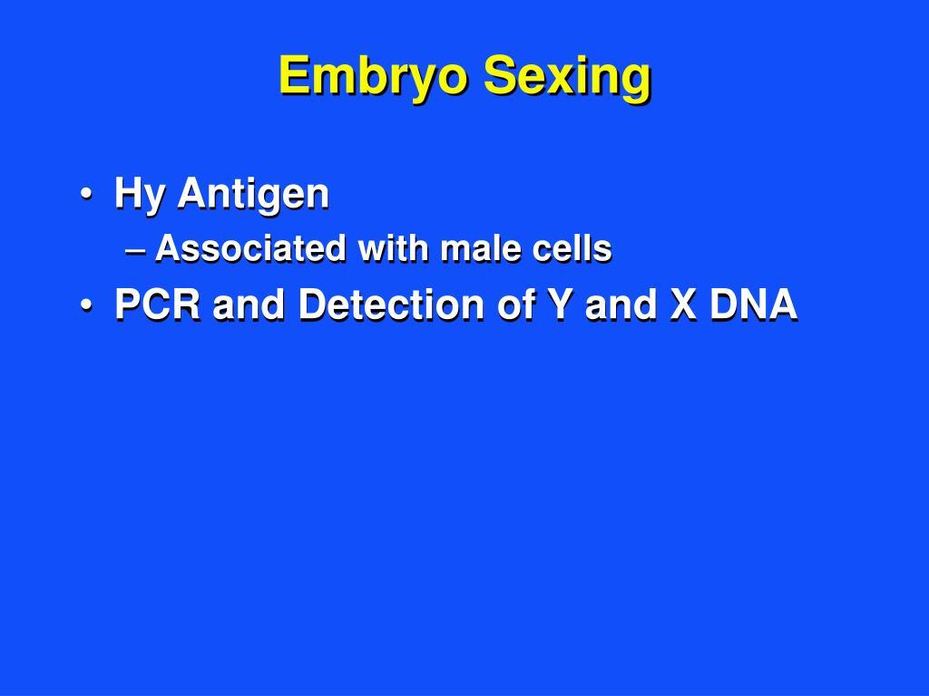 Embryo Sexing