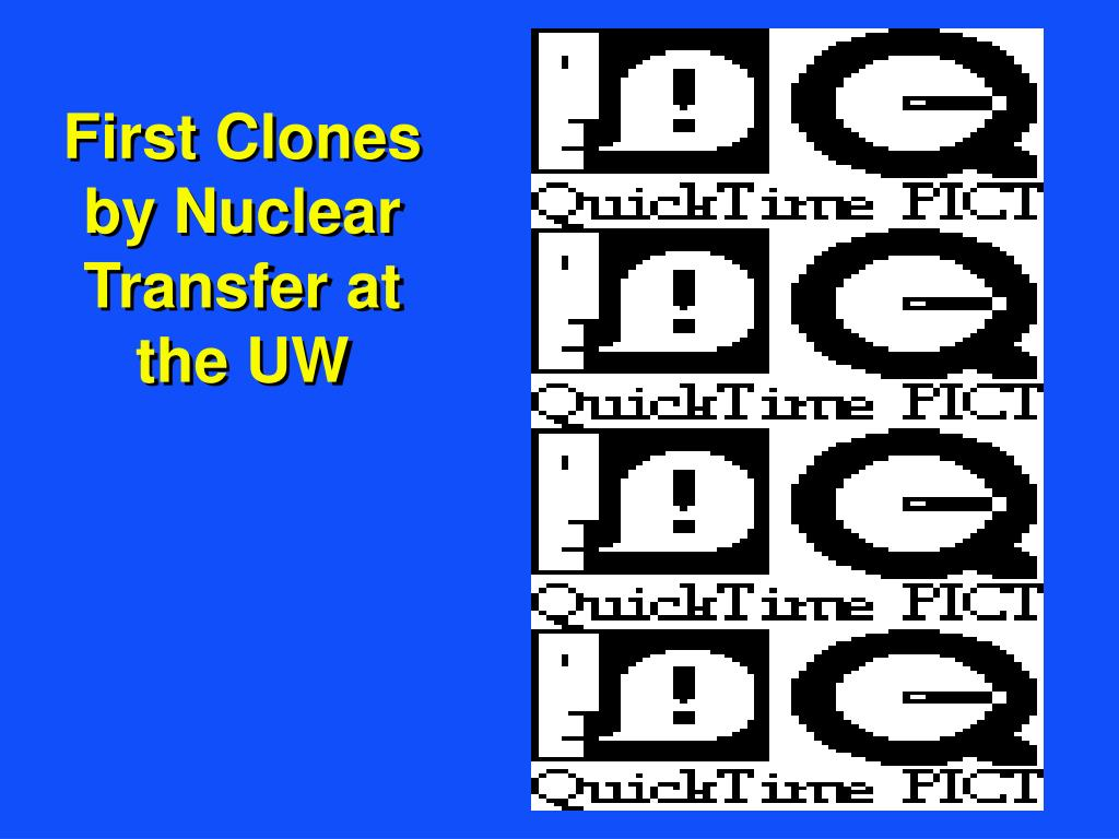 First Clones by Nuclear Transfer at the UW