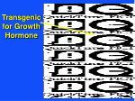 transgenic for growth hormone