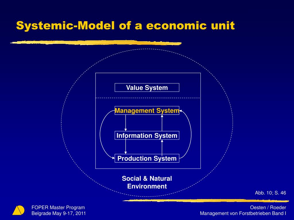 Systemic-Model of a economic unit