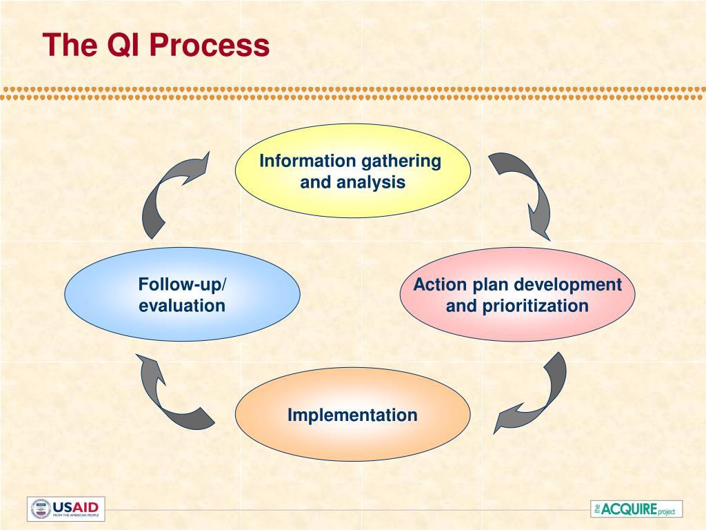 The QI Process