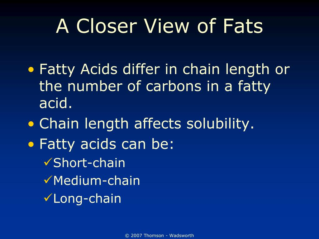 A Closer View of Fats