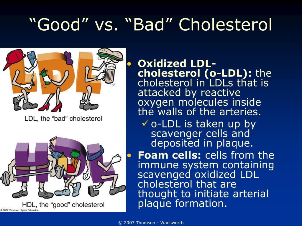 """Good"" vs. ""Bad"" Cholesterol"