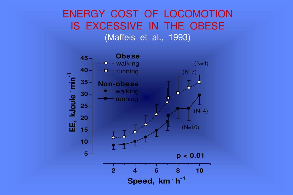 ENERGY  COST  OF  LOCOMOTION
