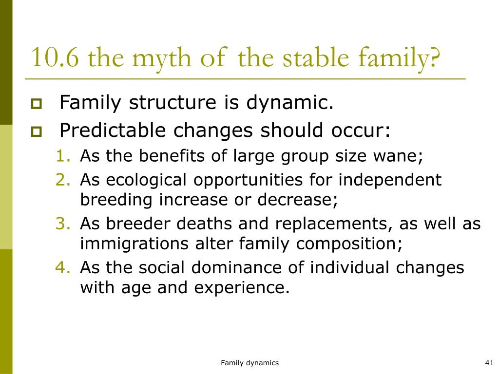 10.6 the myth of the stable family?