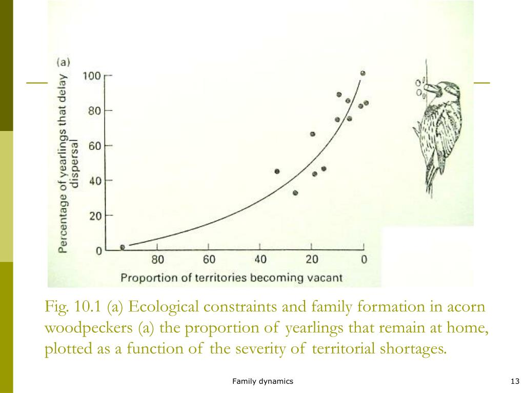 Fig. 10.1 (a) Ecological constraints and family formation in acorn woodpeckers (a) the proportion of yearlings that remain at home, plotted as a function of the severity of territorial shortages.