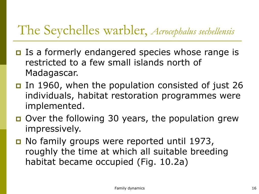 The Seychelles warbler,