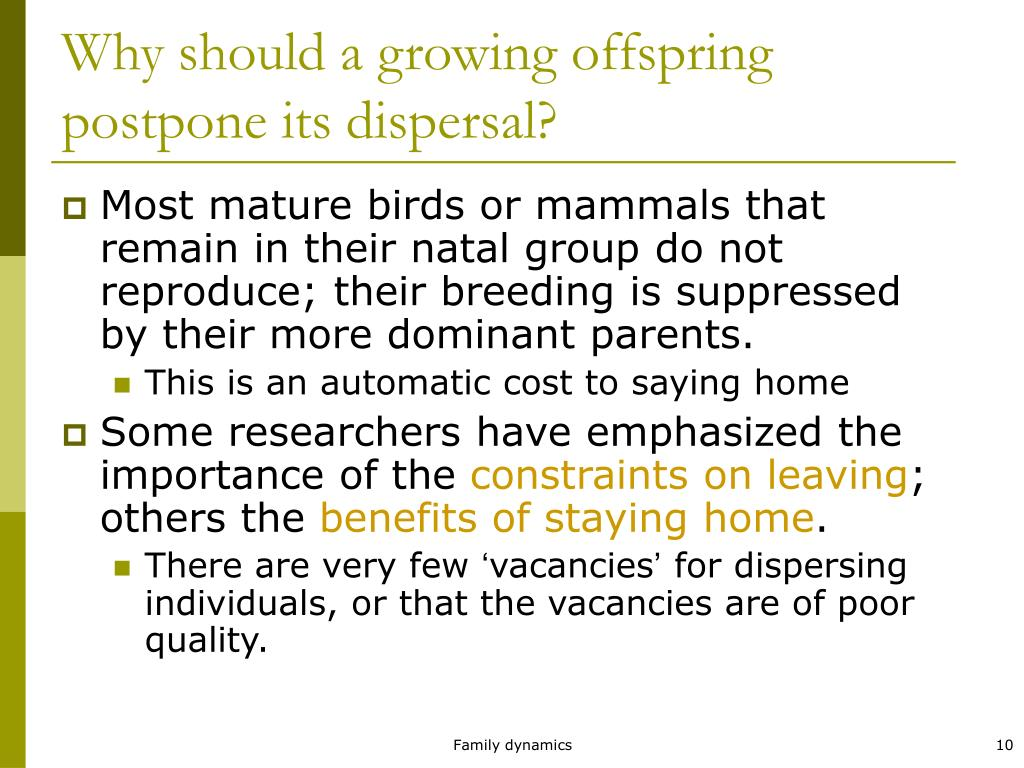 Why should a growing offspring postpone its dispersal?