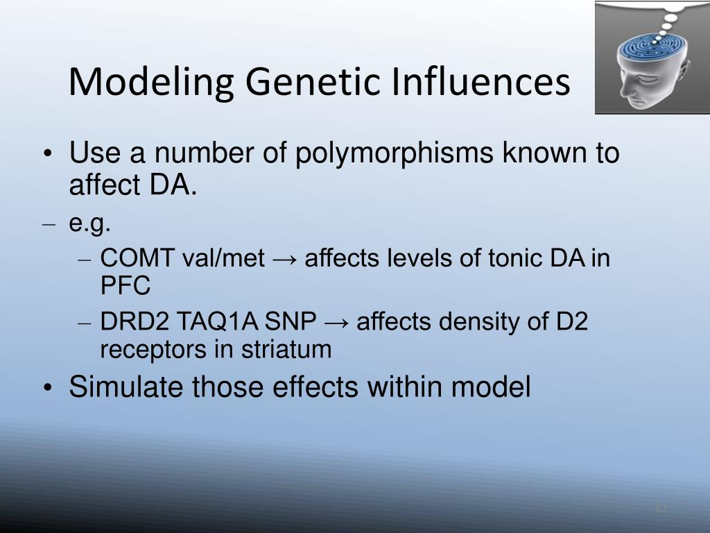 Modeling Genetic Influences