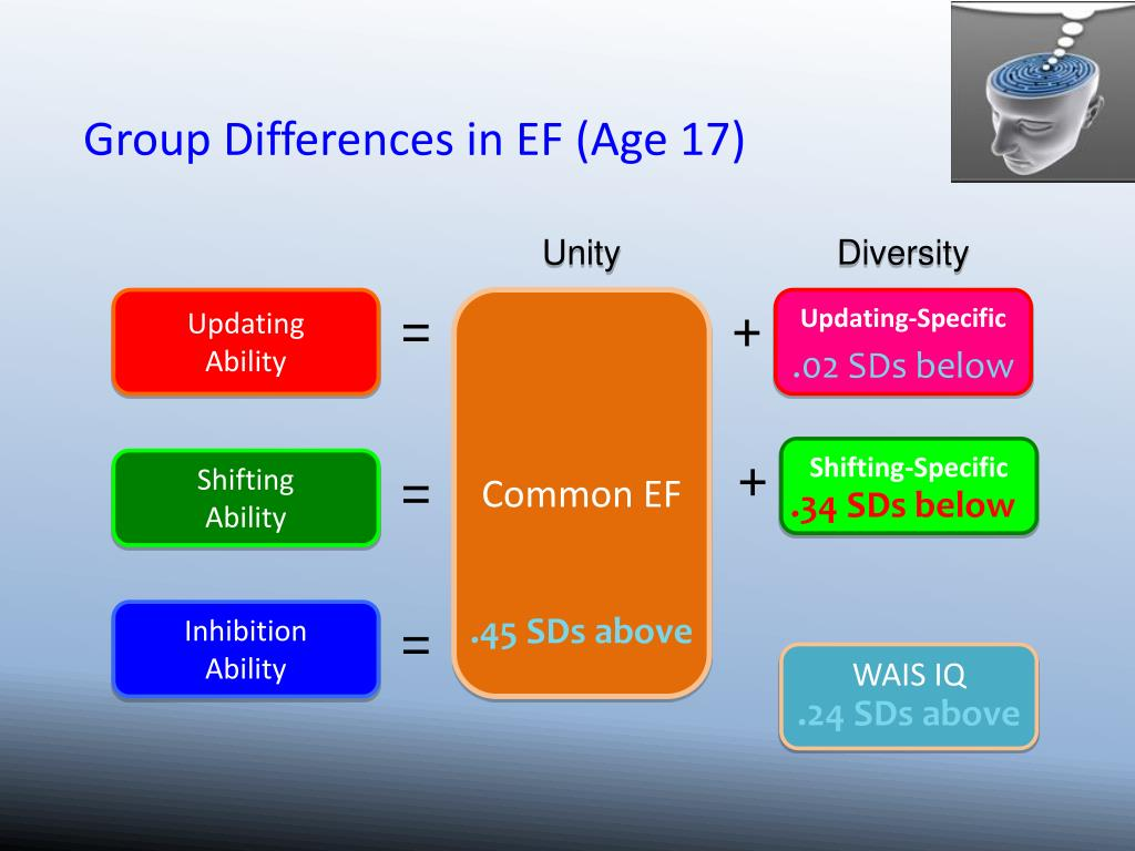 Group Differences in EF (Age 17)