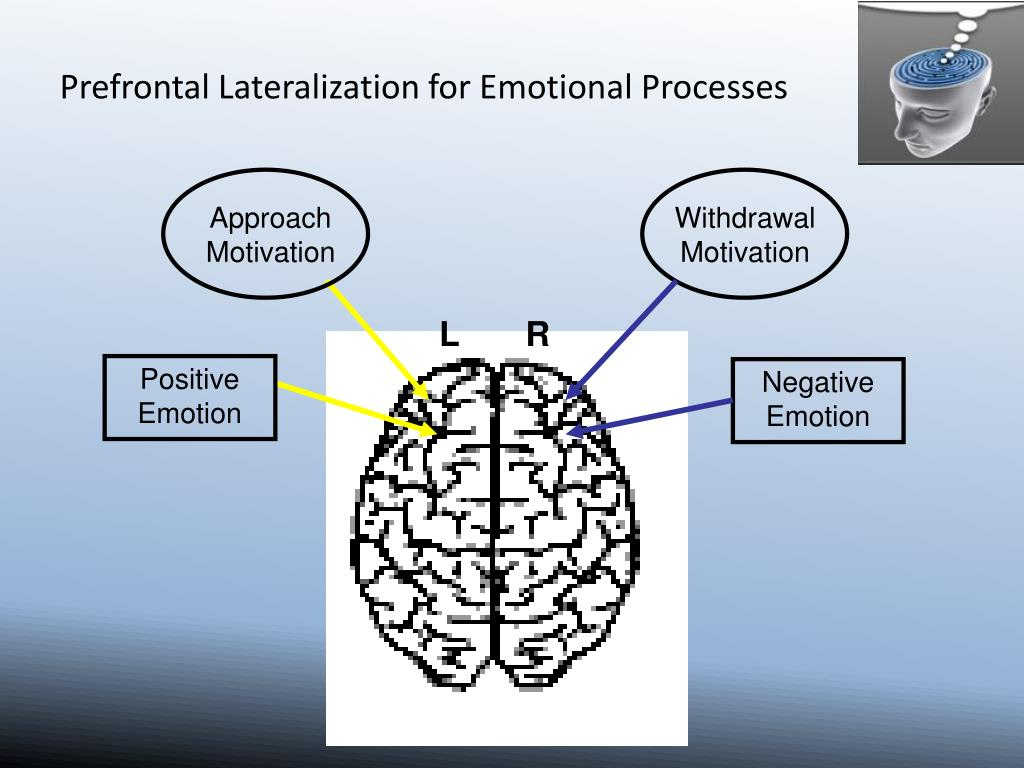 Prefrontal Lateralization for Emotional Processes