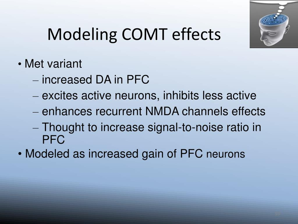 Modeling COMT effects