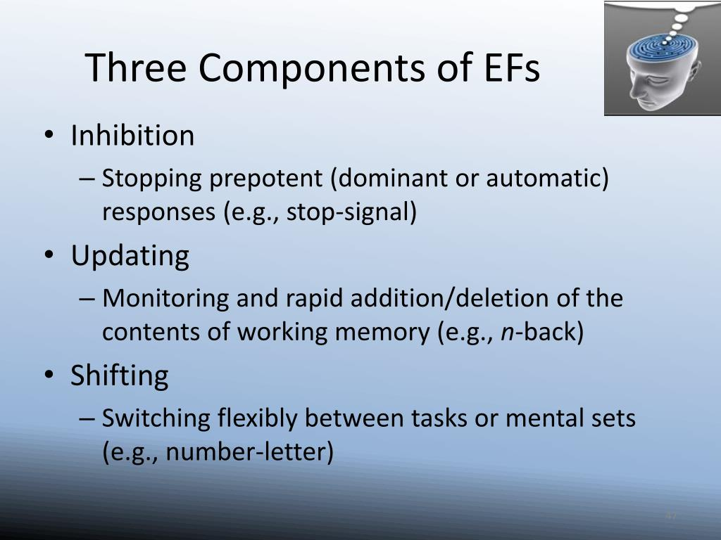 Three Components of EFs