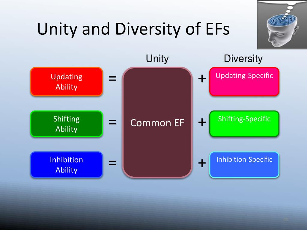 Unity and Diversity of EFs