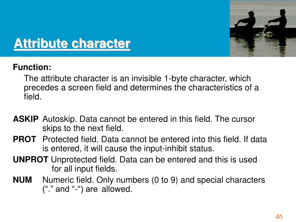 Attribute character