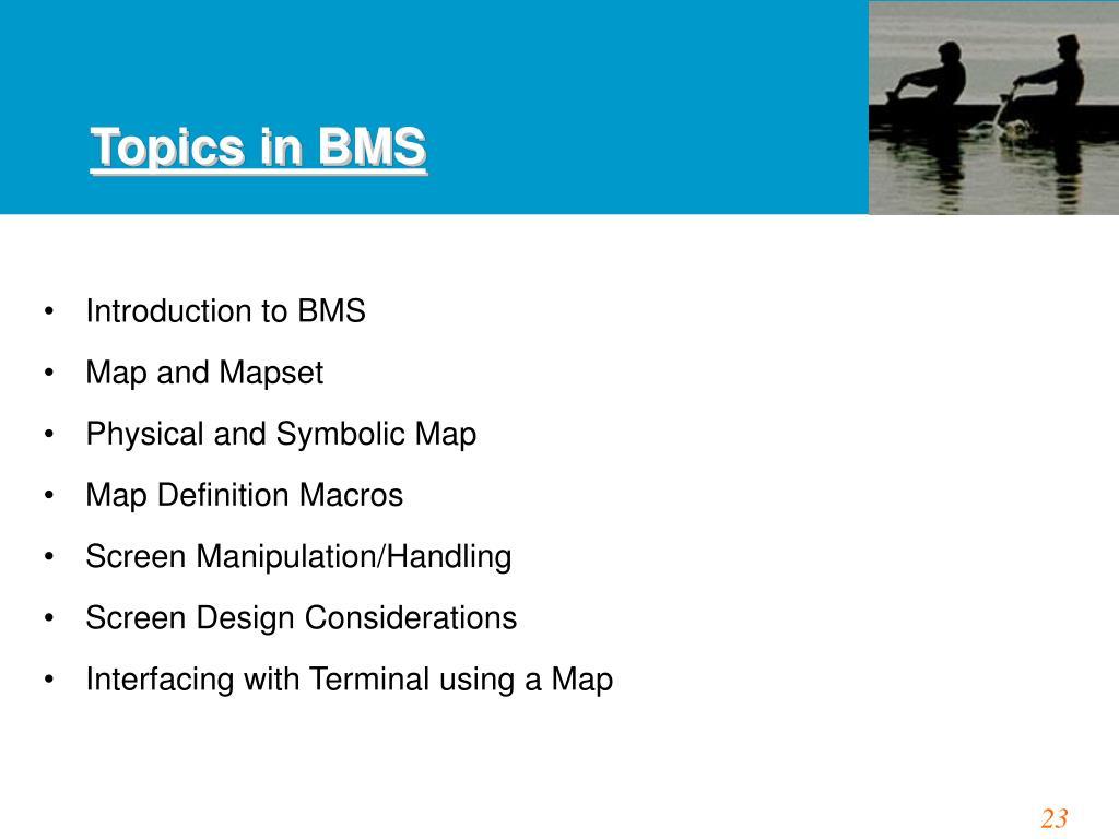 Topics in BMS
