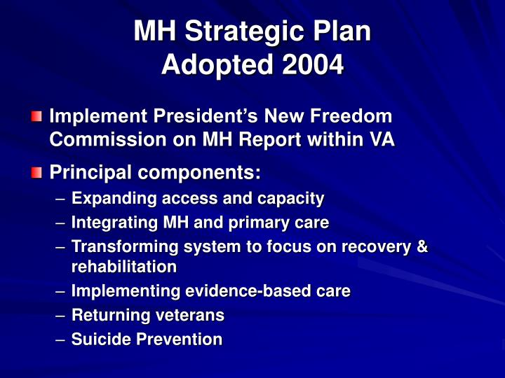 Mh strategic plan adopted 2004