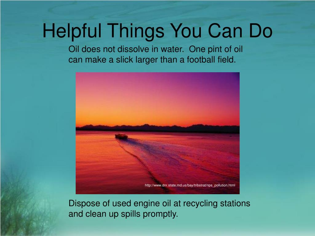 http://www.dnr.state.md.us/bay/tribstrat/nps_pollution.html