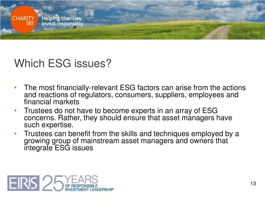 Which ESG issues?
