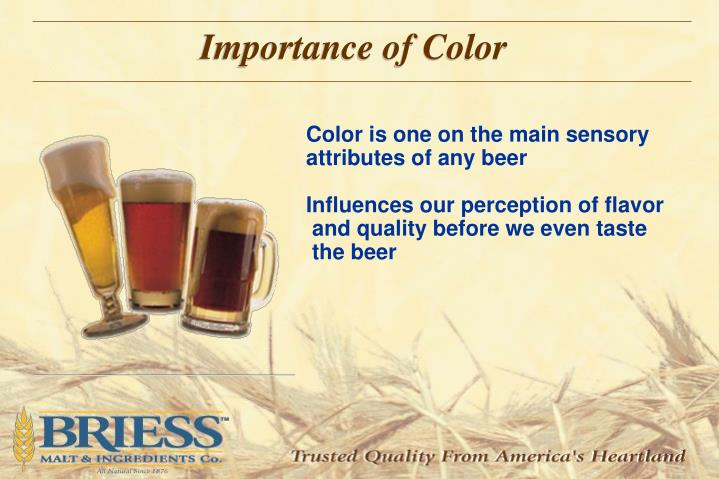 Importance of Color