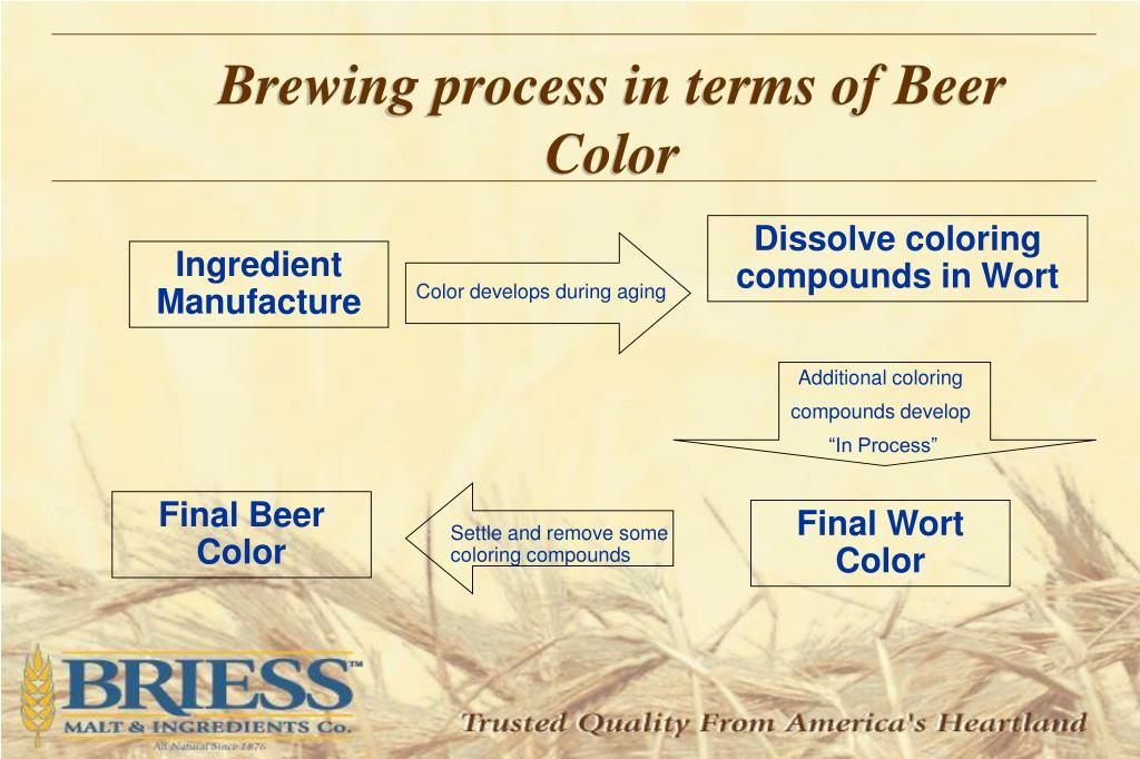 Brewing process in terms of Beer  Color