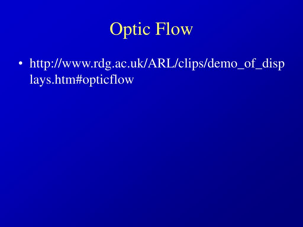 Optic Flow