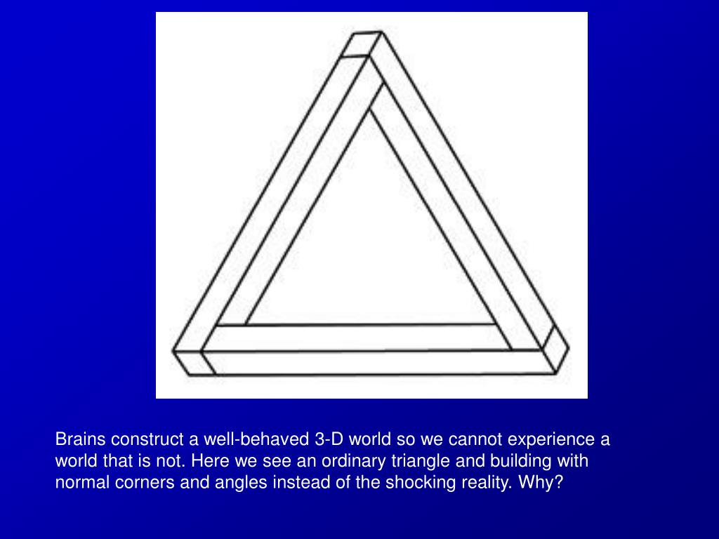 Brains construct a well-behaved 3-D world so we cannot experience a world that is not. Here we see an ordinary triangle and building with normal corners and angles instead of the shocking reality. Why?