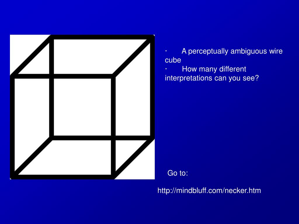 ·       A perceptually ambiguous wire cube