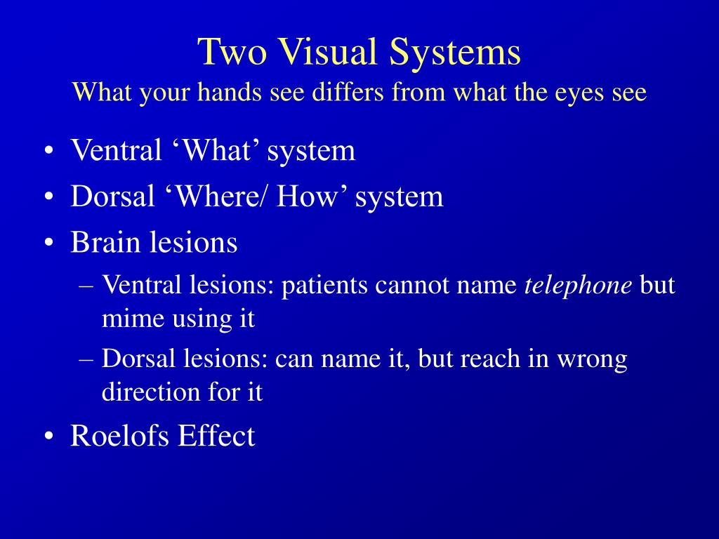 Two Visual Systems