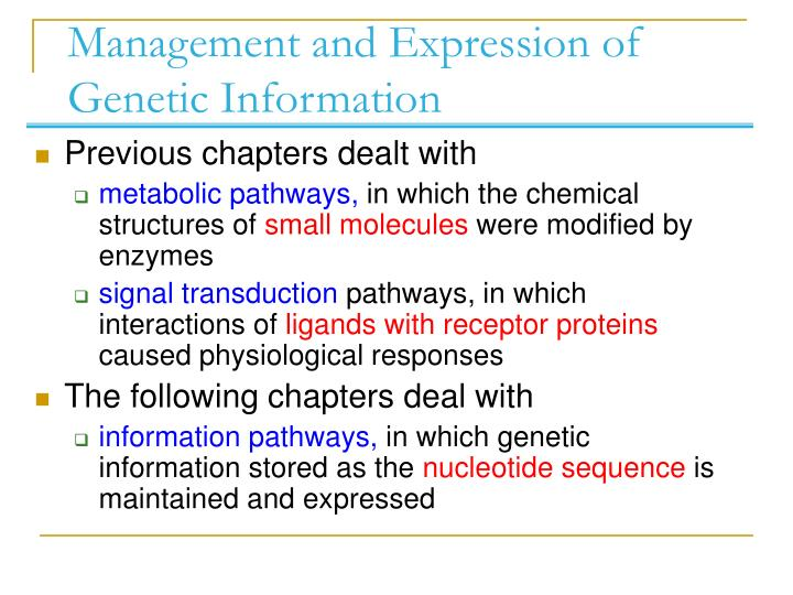 Management and expression of genetic information l.jpg