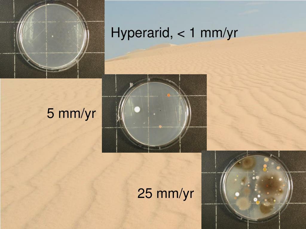 Hyperarid, < 1 mm/yr