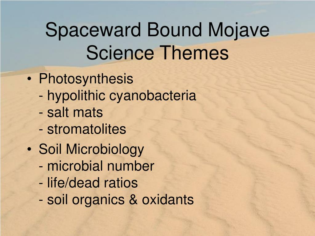 Spaceward Bound Mojave
