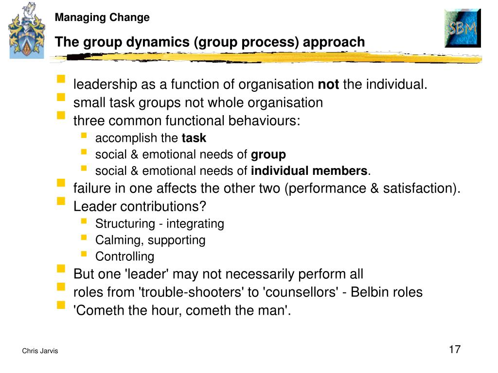 The group dynamics (group process) approach