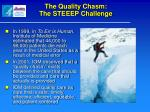 the quality chasm the steeep challenge
