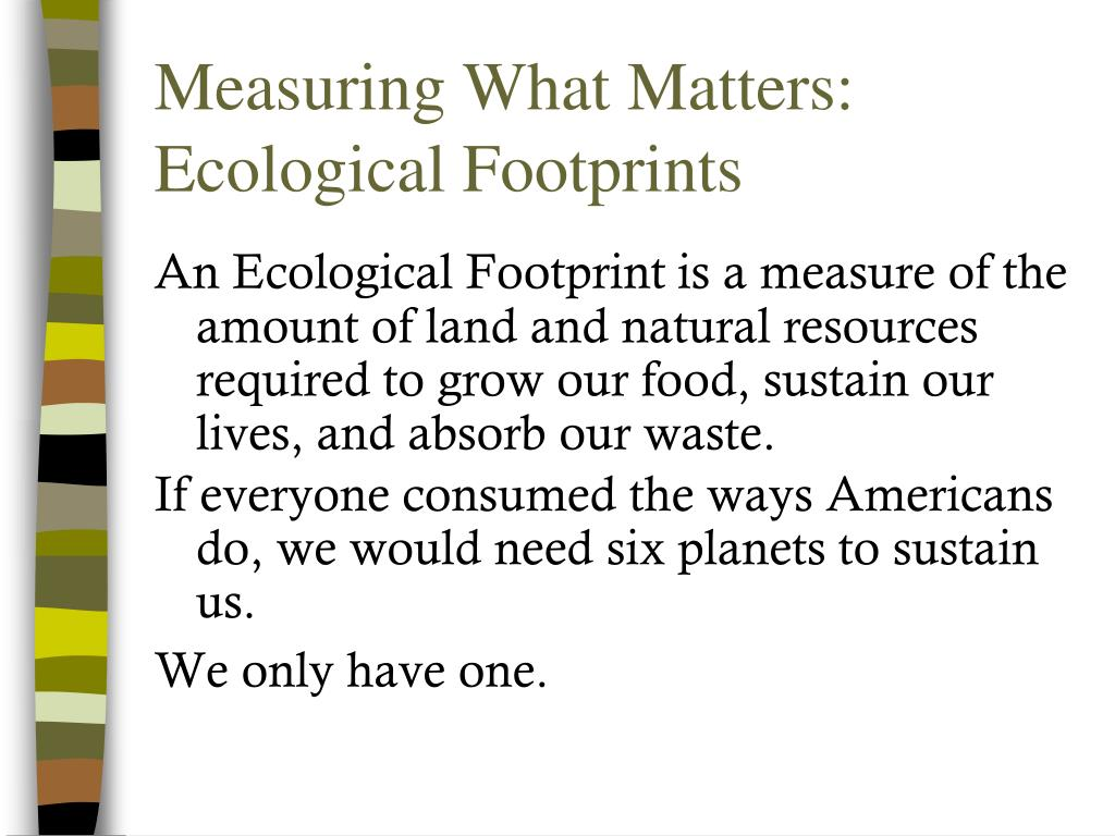 Measuring What Matters: Ecological Footprints