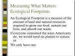 measuring what matters ecological footprints