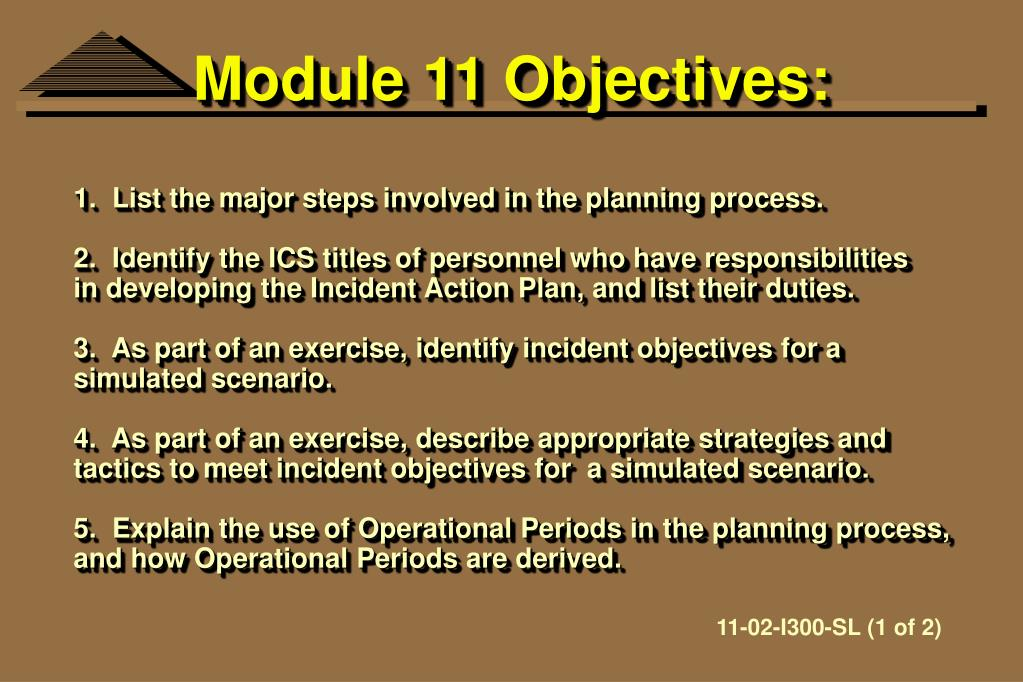 Module 11 Objectives: